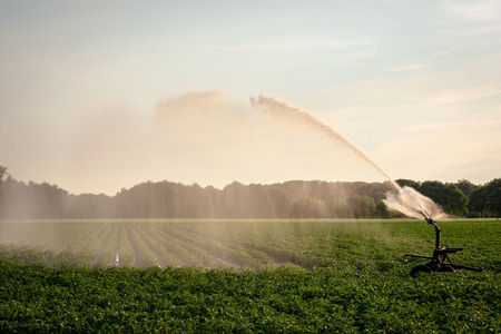 Irrigation and watering of farmland with sprinkler equipment