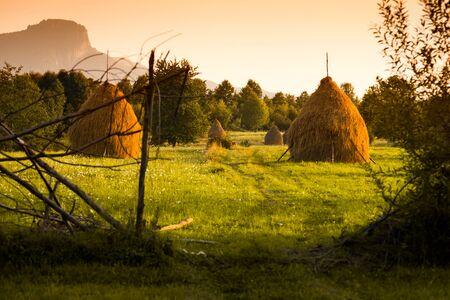 Haystacks at sunset in Maramures the isolated region of Bucovina Romania,