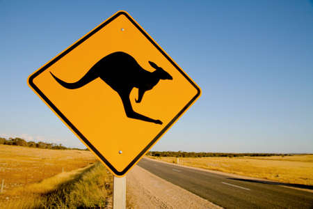 Kangaroo warning sign Australia photo