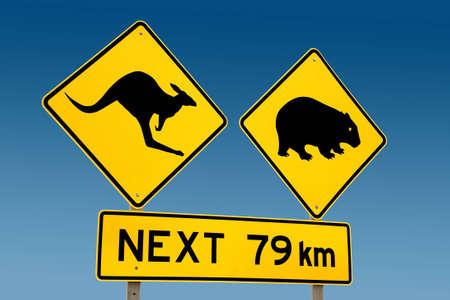 wombat: Canguro y wombat señal de advertencia Australia Foto de archivo
