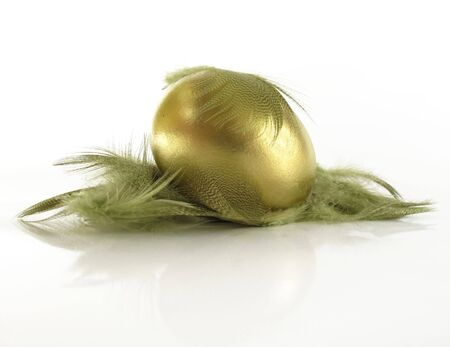 Beautiful gold nest egg in a feathered nest