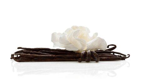 白地に白の花で飾られた乾燥されたバニラ豆の一握り