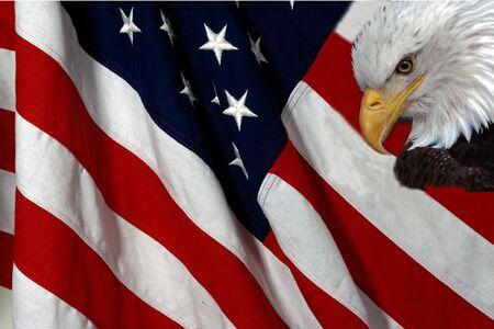 American flag and bald eagle photo