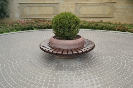 circular bench in the park photo