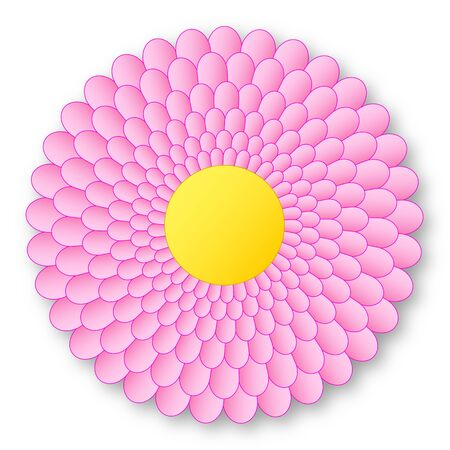 Lovely pink flowerer with yellow center and with shadow on white background Archivio Fotografico