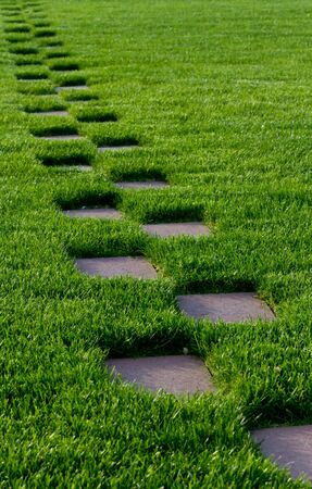Grass with a stone walkway Stock Photo