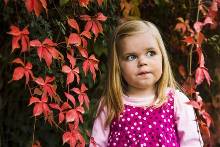 Portrait of a young girl agains leaves showing fallautumn colors  Stock Photo