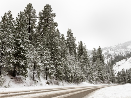 Cold day up in the mountains with a road that people have gone over. Scene is covered in snow. Stock Photo