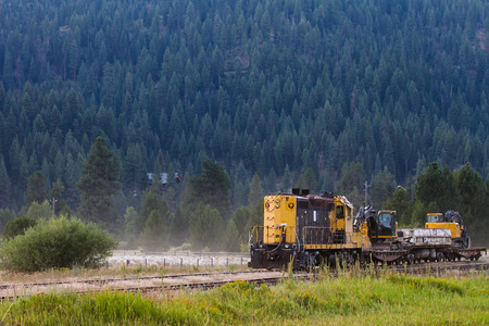 Black and yellow train with the forest on a mountain as a background.