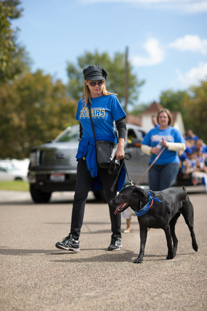 CALDWELL, IDAHOUSA - SEPTEMBER 27: Unidentified woman walks her dog through the Caldwell High School Homecoming parade on September 27, 2013
