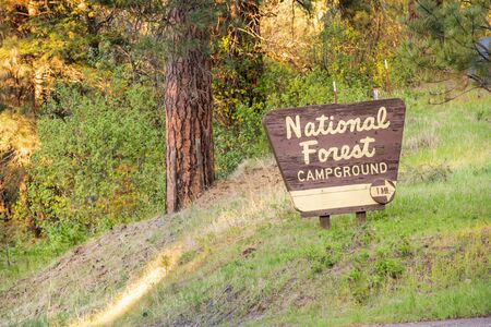 Nation forest sign showing you where to camp