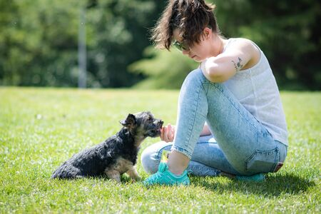 young woman playing affectionately with small dog of the yorkshire breed in garden with grass and trees.