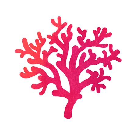 anthozoa: hand drawn decorative watercolor coral