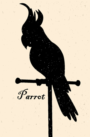 cockatoos: Silhouette of the bird. A parrot on a perch