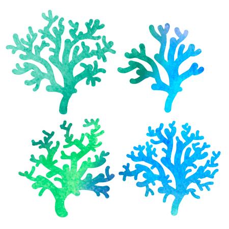 polyp:  decorative watercolor coral
