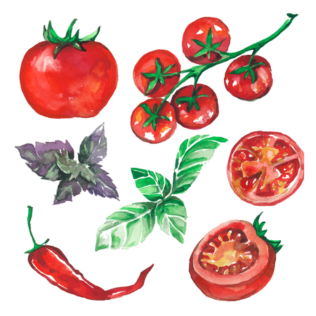 tomatoes: vegetables set drawn watercolor blots and stains with tomatoes, pepper, basil