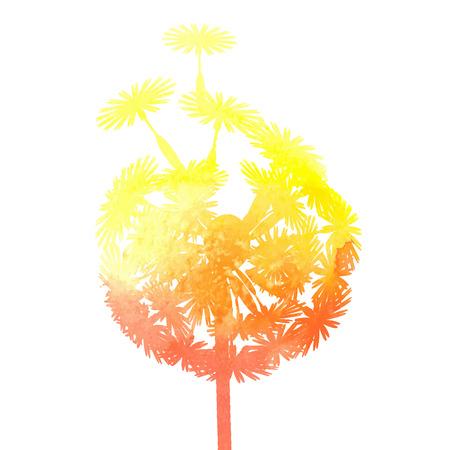 pistil: watercolor dandelion Illustration