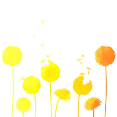pistil: watercolor dandelion background Illustration