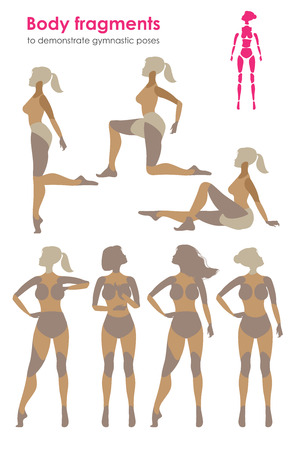 poser: Fragments of body for demonstrating gymnastic poses.Vector silhouette of a woman who practices