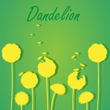 posterity: Dandelions on light background. Vector silhouette