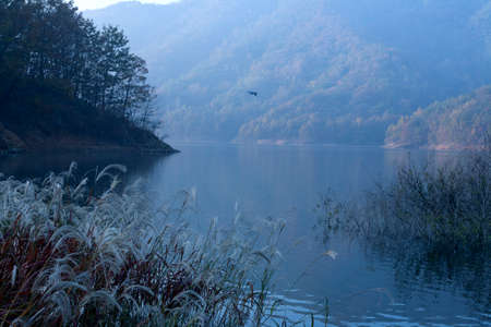 mountin: lake on the early morning landscape