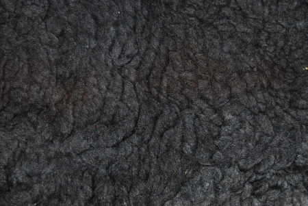 skin texture Stock Photo - 15738478