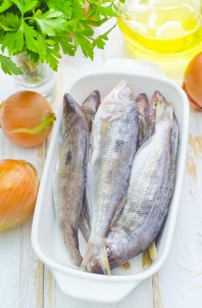 fresh fish Stock Photo - 16669285