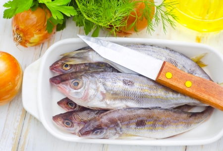 fresh fish Stock Photo - 16669294