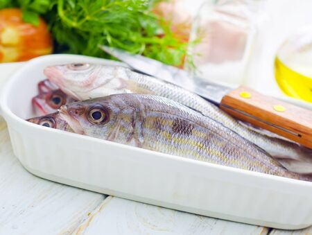 fresh fish Stock Photo - 16669244