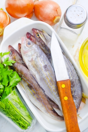 fresh fish Stock Photo - 16669302