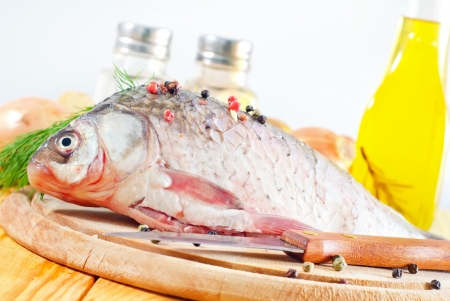fresh carp Stock Photo - 17821895