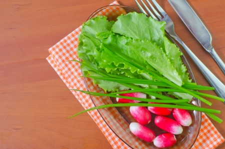 vibrat color: radish and salad Stock Photo