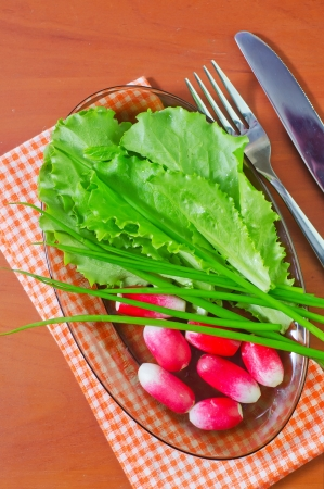 radish and salad Stock Photo - 19366901
