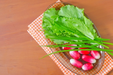 radish and salad Stock Photo - 19366880