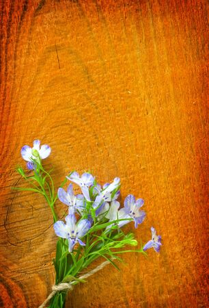 flowers on wooden background photo