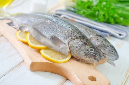 raw fish Stock Photo - 19770420