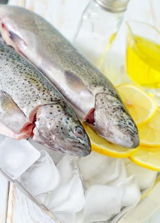 raw fish Stock Photo - 19770413