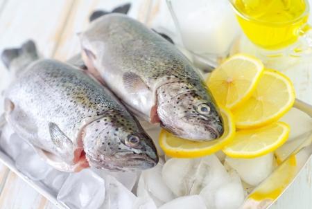 raw fish Stock Photo - 19770428