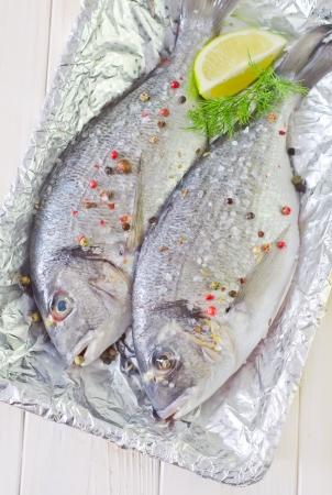 daurade: dorado fish