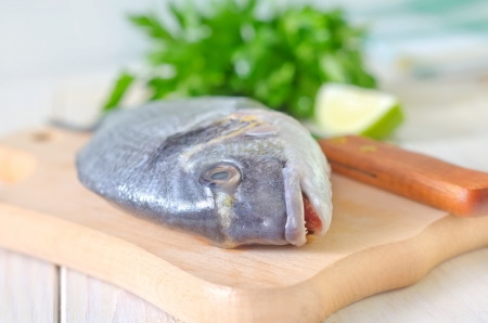 dorado: dorado fish