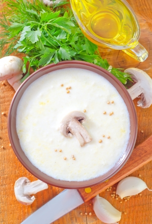 soup from mushroom Stock Photo - 20281855