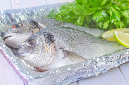daurade: raw fish