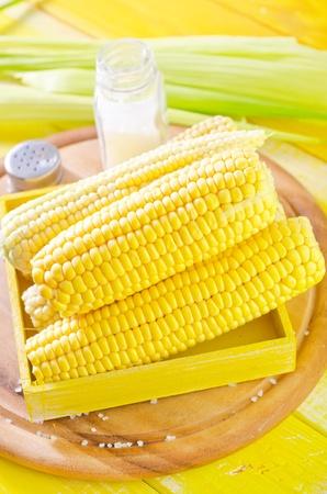 sweet corns 版權商用圖片