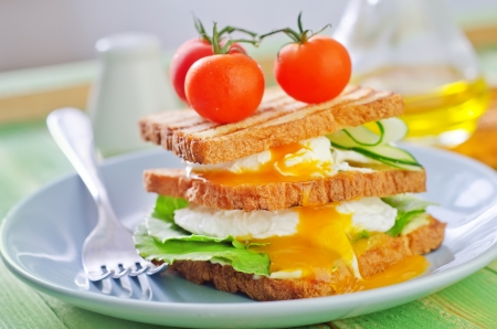 toasts with egg-poached photo