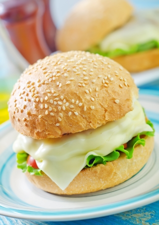burger photo