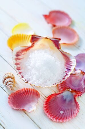 sea salt and shells photo