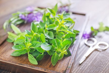 aroma herbs photo