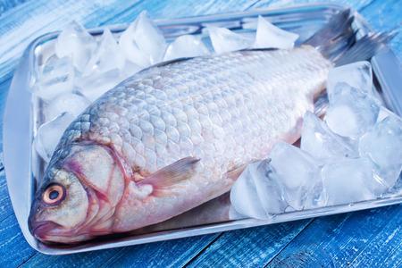raw fish photo