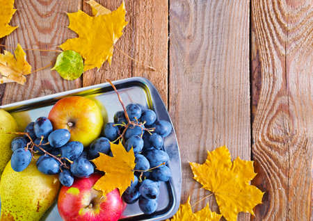 autumn harvest on the metal tray and on a table photo
