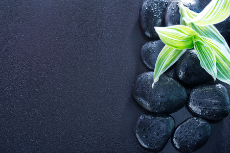 black stones and green leaves on the black table